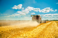 Combine harvester in work Stock Photos