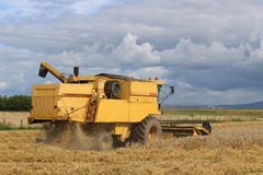 Combine harvester at work in cereal field. Royalty Free Stock Images