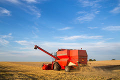 Combine harvester at work Stock Image