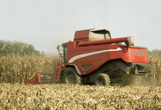 Combine harvester at work Stock Images
