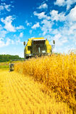 Combine harvester in work Stock Photo