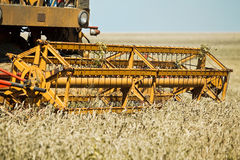 Combine harvester working Stock Photos