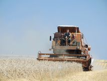 Combine harvester Stock Images