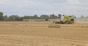 Combine harvester working the field Stock Images