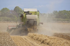 Combine harvester working the field Royalty Free Stock Photos
