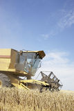 Combine Harvester Working In Field Stock Image