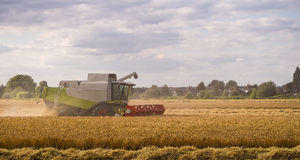 Combine Harvester Working in Field Royalty Free Stock Photo