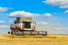 Combine harvester is working in the field for harvesting. Agricultural work on a sunny day Royalty Free Stock Photos