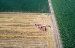 Combine harvester working in golden wheat field. Aerial image of combine harvester and tractors working in ripe golden wheat field with corn fields around Stock Images