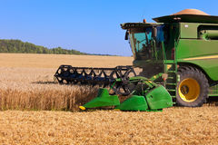 Combine harvester working royalty free stock images