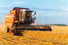 Combine harvester working stock photography