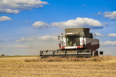 Combine harvester. Working on the harvest in a field Royalty Free Stock Image