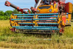 Combine harvester Working on rice field. Harvesting is the process of gathering a ripe crop. From the fields in thailand royalty free stock image