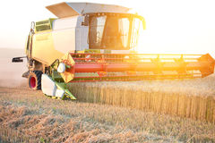 Combine harvester working Stock Image