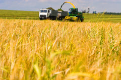 Combine harvester working a wheat field Royalty Free Stock Photography