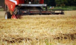 Combine harvester working stock image