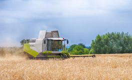 Combine harvester. Working on a wheat field stock photos