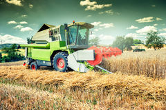 Combine harvester working on wheat field. Agricultural concept Stock Photos