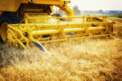 Combine harvester working at wheat field Royalty Free Stock Photo