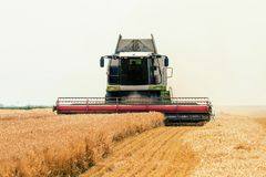 Combine harvester working on a wheat field. Harvesting wheat. Agriculture stock image