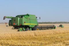 Combine harvester works in the field. Mechanized harvesting wheat grain harvester Stock Photography