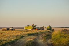 Combine Harvesters cutting wheat, royalty free stock image