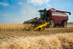 Combine harvesters in a field of wheat Royalty Free Stock Photos