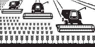 Combine harvesters gathering wheat. Vector illustrator Stock Image