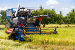 Combine harvesters were reaping Royalty Free Stock Photo