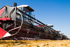 Combine harvesters Stock Photography