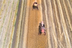 Combine harvesters working in golden wheat field. Aerial image of two combine harvesters working in ripe golden wheat field. Harvesting in summer time Stock Images