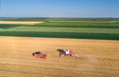 Combine harvesters working in wheat field Stock Photo