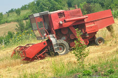 Combine harvesting. Red combine harvesting in the field of wheat Stock Photography