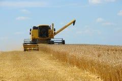 Combine harvesting Stock Photo