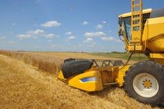 Combine harvesting Stock Image