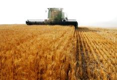 Combine harvesting Stock Photos