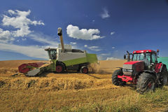 Combine harvesting. A combine harvester harvests wheat under a British summer sky. Space for text in the sky Royalty Free Stock Photo
