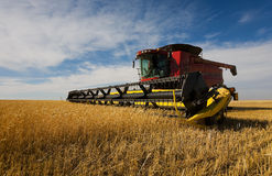 Combine harvesting Royalty Free Stock Image