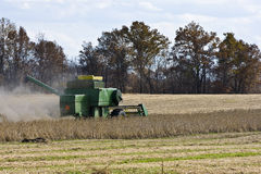 Combine harvesting close up Royalty Free Stock Photos