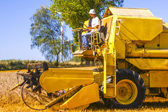 Combine harvesting corn Stock Images