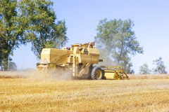 Combine harvesting corn Royalty Free Stock Photography