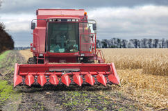 Combine for harvesting corn. Autumn Royalty Free Stock Image