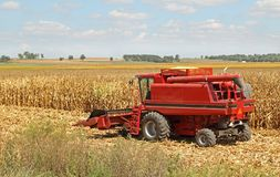 Combine Harvesting Corn Crop Stock Photography