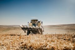 Combine harvesting the corn at sunset hours, agriculture industry royalty free stock photos