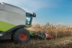 Combine harvesting crop corn. Grain fields Stock Image