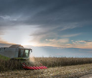Combine harvesting crop Stock Photos