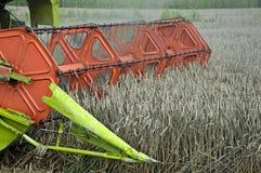 Combine harvesting crops Stock Image