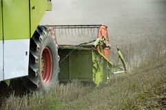 Combine harvesting crops Royalty Free Stock Photos