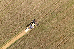 Combine Harvesting a Fall Corn Field Aerial Stock Image