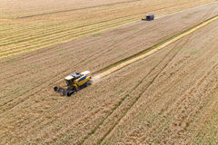 Combine Harvesting a Fall Corn Field. Aerial Stock Photos